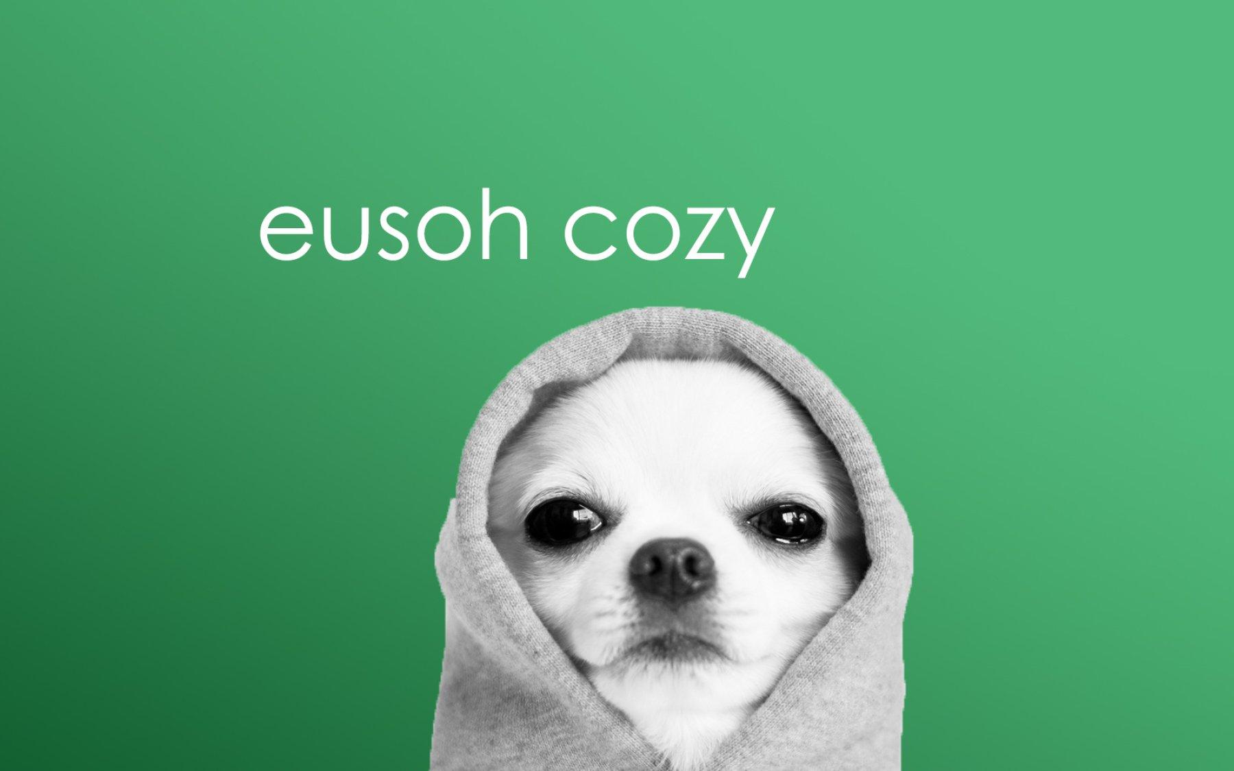 Eusoh close seed round